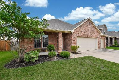 League City Single Family Home For Sale: 249 Harbor Bend Lane