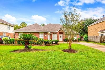 Houston Single Family Home For Sale: 7210 Birchtree Forest Drive