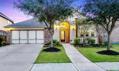 Katy Single Family Home For Sale: 9615 Amethyst Arbor Lane