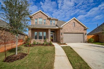 Katy Single Family Home For Sale: 23802 Hartford Springs Trail