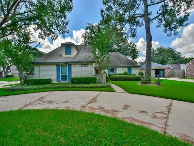 Katy Single Family Home For Sale: 23003 Chelsen Bridge Lane