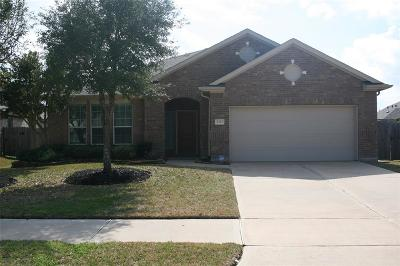 Katy Single Family Home For Sale: 4227 Misty Waters Lane