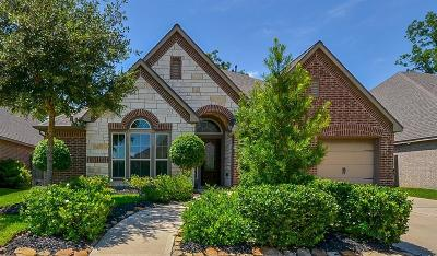 Sienna Plantation Single Family Home For Sale: 31 Bear Grove Drive