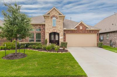 Galveston County Single Family Home For Sale: 4606 Hermosa Arroyo Drive