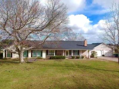 Angleton Single Family Home For Sale: 225 County Road 735