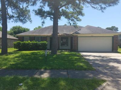Houston Single Family Home For Sale: 9007 Goodmeadow Drive