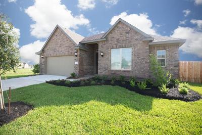 Rosenberg Single Family Home For Sale: 2218 Pickford Terrace Lane