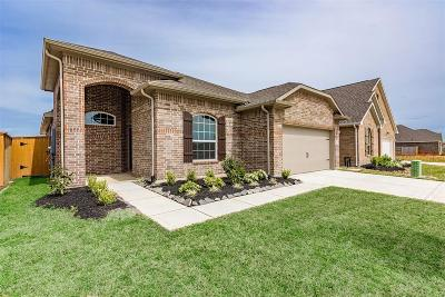 Texas City Single Family Home For Sale: 12602 Jetty Cove Drive