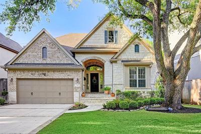 Houston Single Family Home For Sale: 3642 Blue Bonnet Boulevard