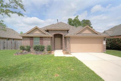 Porter Single Family Home For Sale: 19063 Painted Boulevard