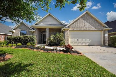 Katy Single Family Home For Sale: 28026 Rusty Hawthorne Drive