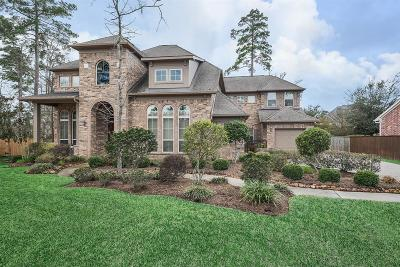 The Woodlands Single Family Home For Sale: 87 S Fair Manor Circle