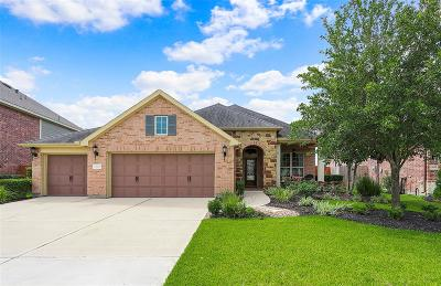 Tomball Single Family Home For Sale: 12615 Spellbrook Point Lane