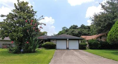 Houston Single Family Home For Sale: 11127 Dalebrook Drive