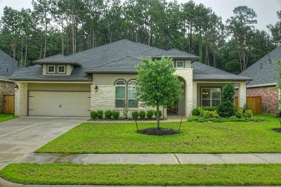 Tomball Single Family Home For Sale: 30814 Raleigh Creek