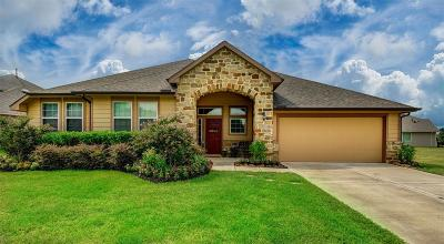 Tomball Single Family Home For Sale: 11206 Misty Willow Lane