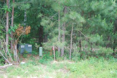 Willis Residential Lots & Land For Sale: 00 Weeping Bow