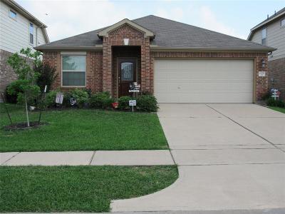 Katy Single Family Home For Sale: 20759 Rainmead Drive