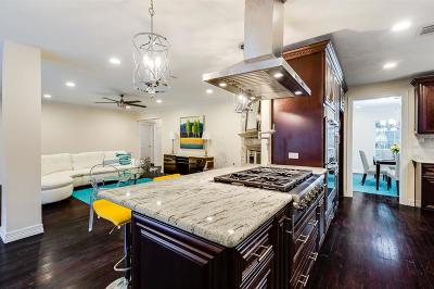 Houston Single Family Home For Sale: 1719 Briarmead Drive