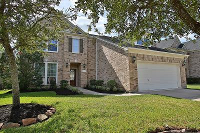 Sugar Land Single Family Home For Sale: 3915 Jade Cove Lane
