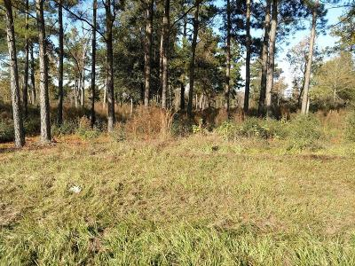 Tomball Residential Lots & Land For Sale: 1414 Hicks