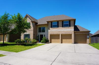 Dickinson Single Family Home For Sale: 1749 Coral Cliff Drive