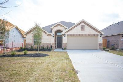 Conroe Single Family Home For Sale: 2930 Fox Ledge Court