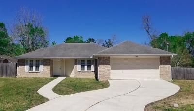 Conroe Single Family Home For Sale: 716 Avenue H