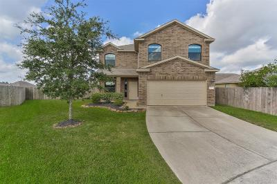 Galveston County, Harris County Single Family Home For Sale: 23103 Norway Maple Lane
