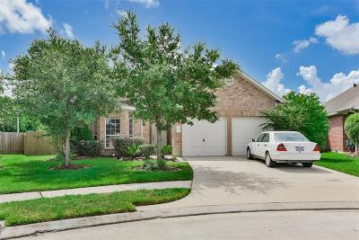 Tomball Single Family Home For Sale: 10003 Arcadian Springs Lane