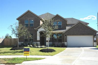Katy Single Family Home For Sale: 28803 Emerald Valley Court