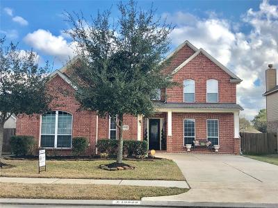 Spring Single Family Home For Sale: 19922 Brookway Oak Court