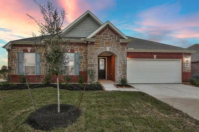 Pearland Single Family Home For Sale: 3902 Honey Hill Lane