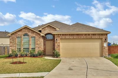 Katy Single Family Home For Sale: 5106 Isabella Lilac Lane