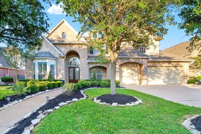 Sugar Land Single Family Home For Sale: 1411 Kentshire Avenue
