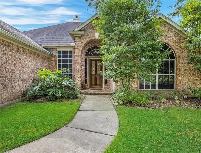 League City Single Family Home For Sale: 517 Cottage Grove Court