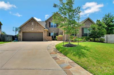 Friendswood Single Family Home For Sale: 1117 Barillos Creek Lane
