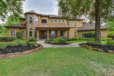 Tomball Single Family Home For Sale: 17102 Lakeway Park