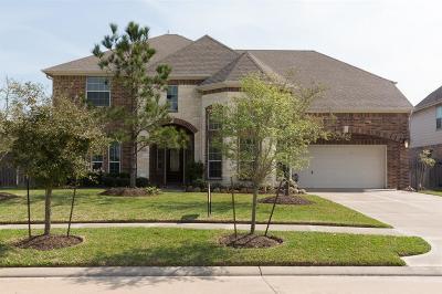 Lakes Of Savannah Single Family Home For Sale: 5301 Amber Sky Lane