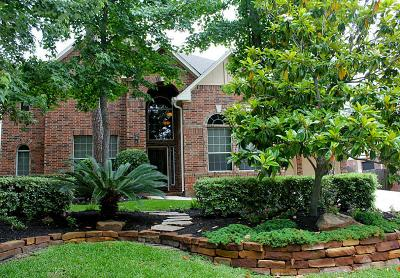 The Woodlands Single Family Home For Sale: 147 E Mirror Ridge Circle