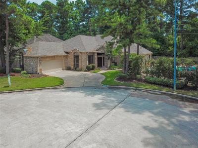 Houston Single Family Home For Sale: 14706 Plantation Oak Drive