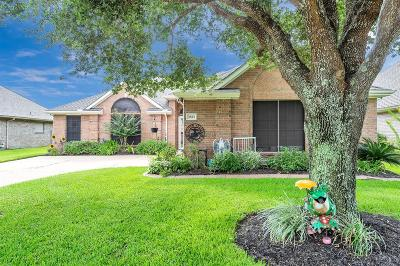 Pearland Single Family Home For Sale: 3823 E Peach Hollow Circle