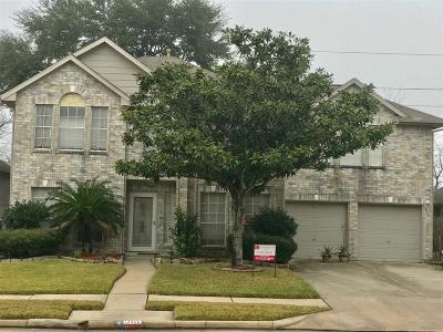 Houston Single Family Home For Sale: 13426 Ryan Landing Drive