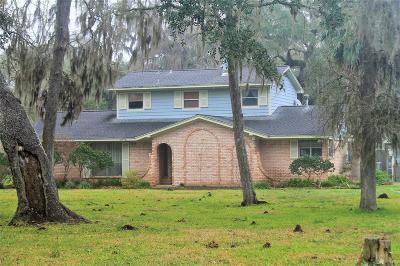 Brazoria Single Family Home For Sale: 19655 Cr 319