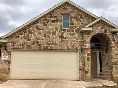 Montgomery County Single Family Home For Sale: 90 La Costa