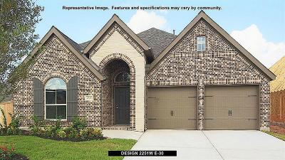 Fulshear Single Family Home For Sale: 30519 Morning Dove Drive
