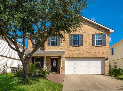 Katy Single Family Home For Sale: 20914 Trenton Valley Lane
