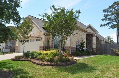 Pearland Single Family Home For Sale: 1605 Primavera Drive