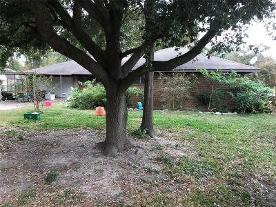 Houston Single Family Home For Sale: 4007 Bolivia Boulevard