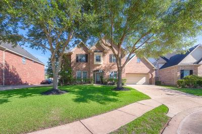 Sugar Land Single Family Home For Sale: 3606 Mystic Bay Court